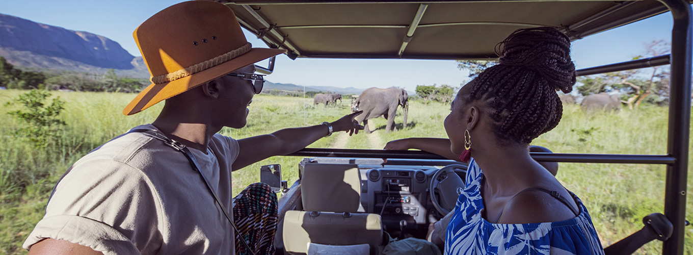 Elephant Spotting on Safari