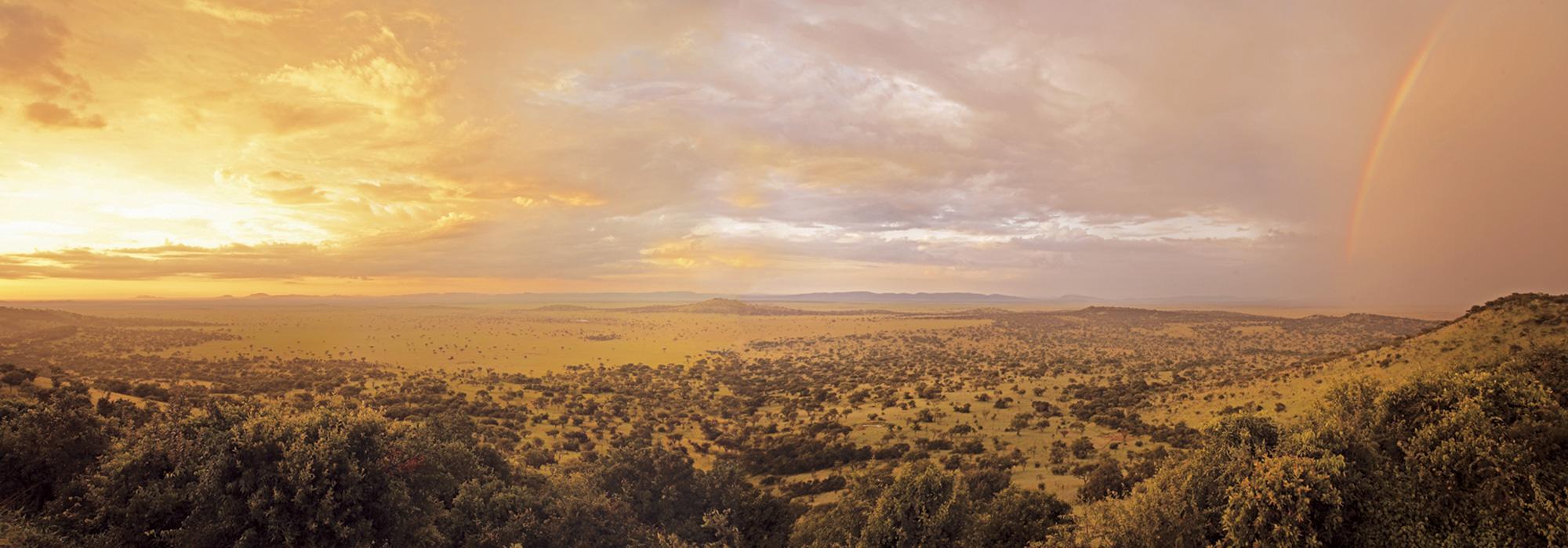 Serengeti Rainbow