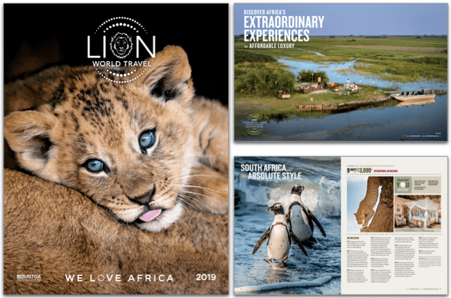 request a brochure lion world travel