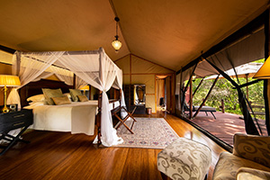 Luxury Tent at Sand River