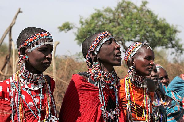 Maasai by Alison Budd
