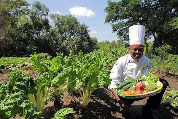Organic Garden at Sarova Mara Camp