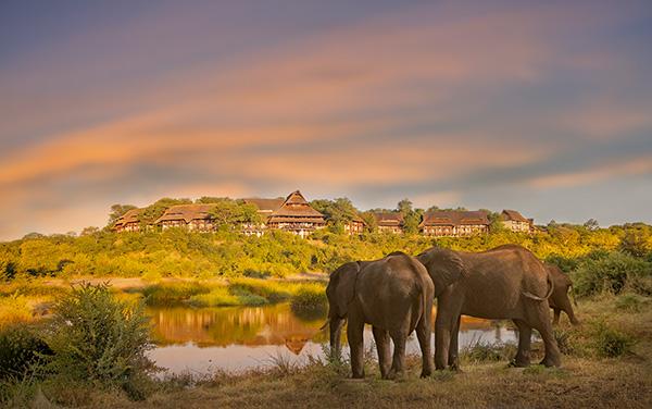 Elephants At Victoria Falls Safari Lodge