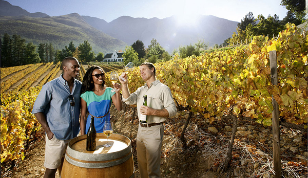 Winelands Tour in South Africa