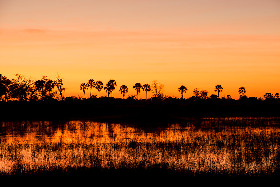 Botswana Sunset at Nxabega Tented Safari Camp in the Okavango Delta