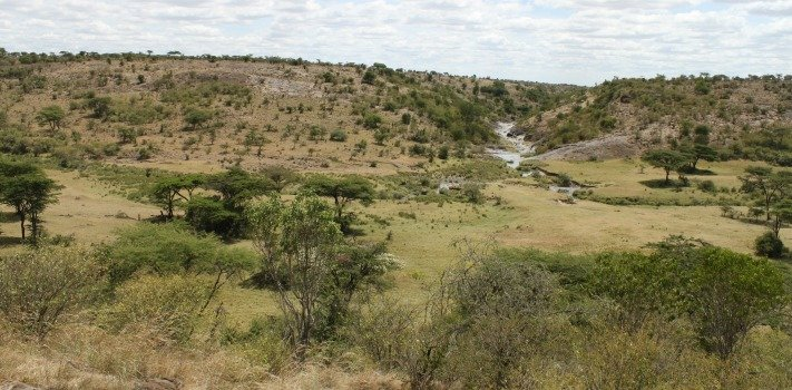 Africa Safari Kenya Mahali Mzuri