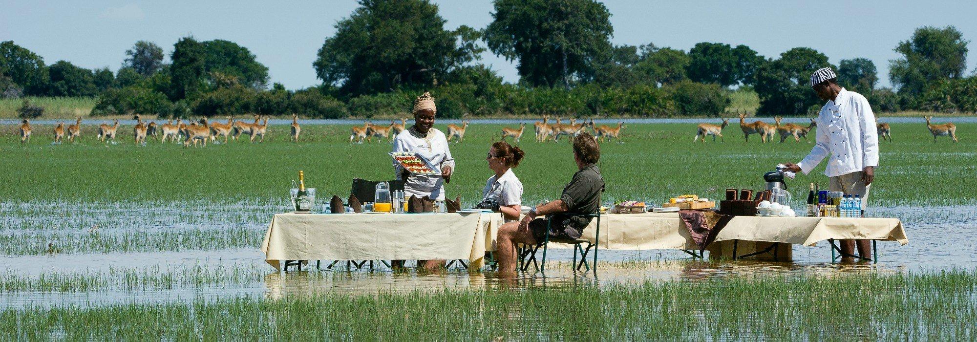 Botswana safari at Jao amp