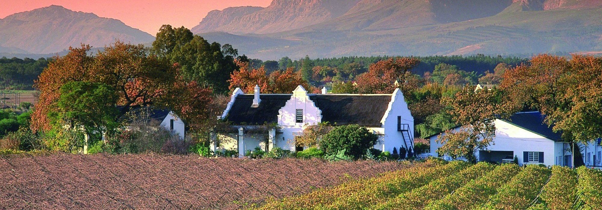 Paarl Cape Winelands