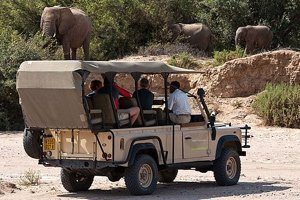 Damaraland Camp Game Drive