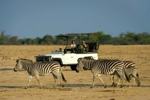 Safari in Hwange Game Reserve Zimbabwe