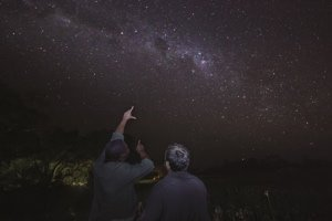 Star Gazing at Eagle Island Lodge