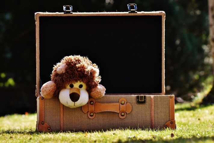 lion plush doll in luggage