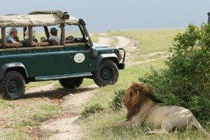 Maasai Mara Safaris