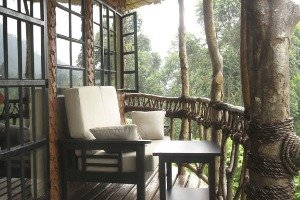 Mahogany Springs Lodge, Bwindi