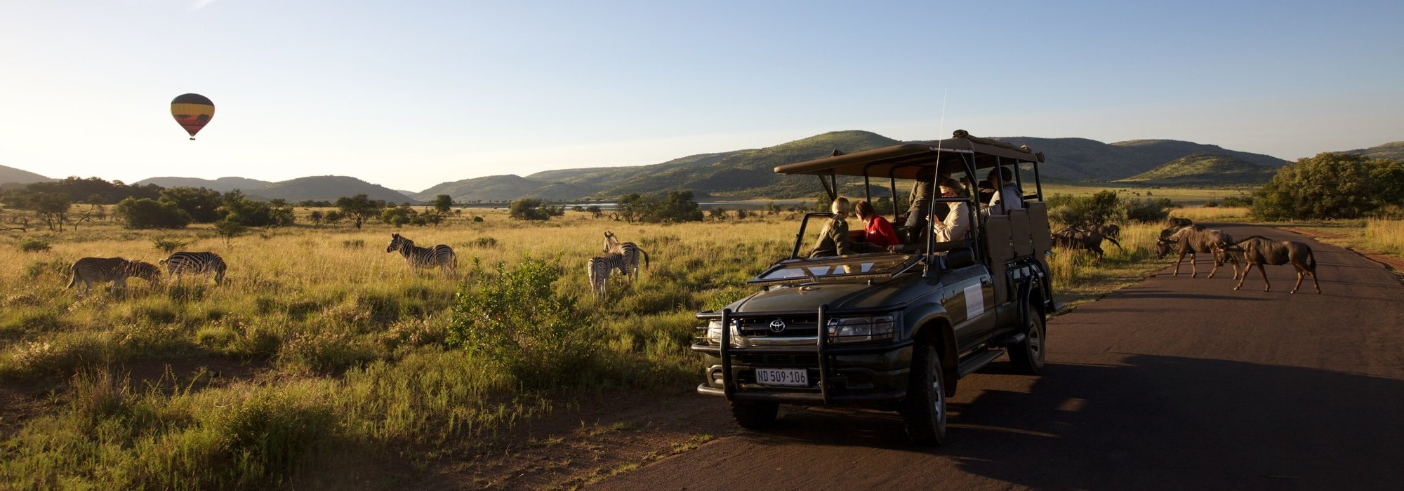 A safari at Pilanesberg