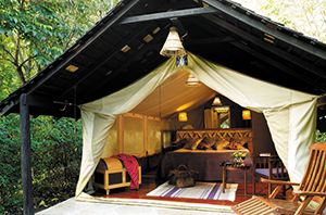 Safari Tent at Mara Camp