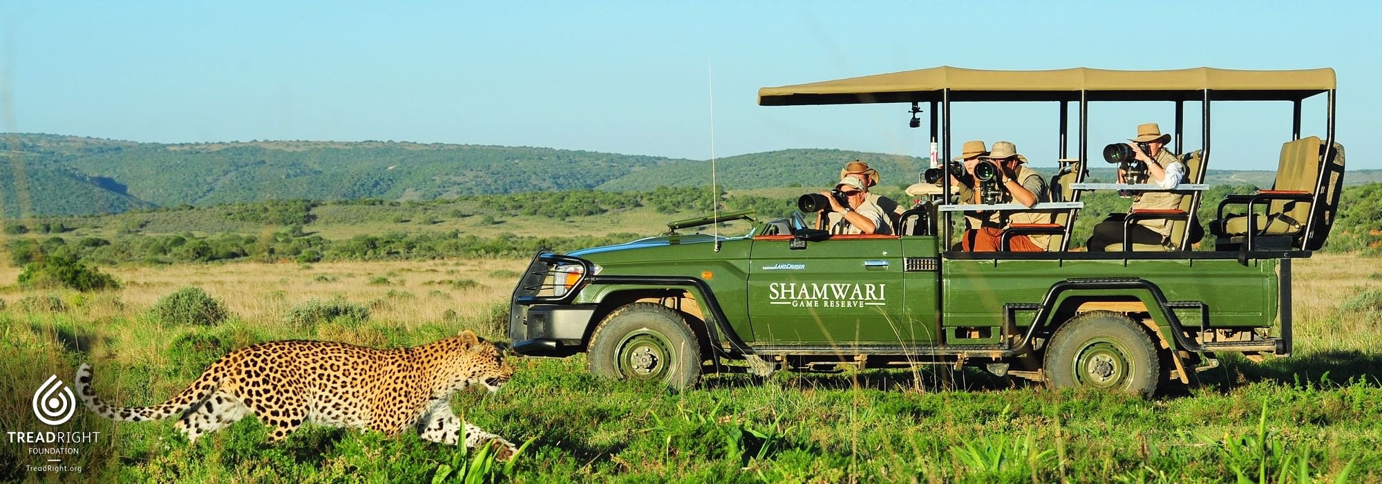 A safari at Shamwari