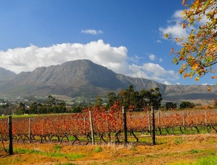 South African Vacation Cape Winelands