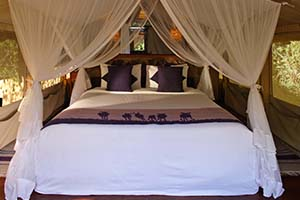 Interior of Safari Tent