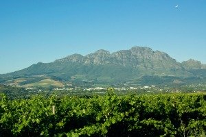 Stellenbosch, Cape Winelands, South Africa