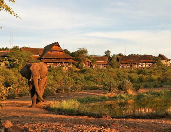 VFSL Exterior with Elephant