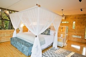 Victoria Falls Island Tree house Suite