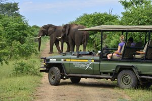 A Safari at Victoria Falls River Lodge