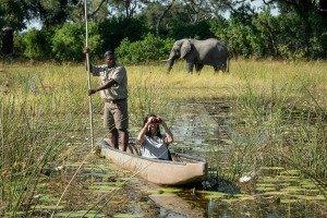 Mokoro Ride, Okavango Delta