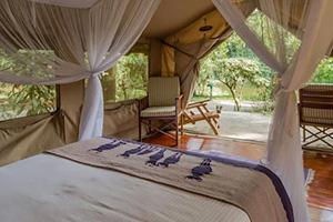Interior of Safari Tent