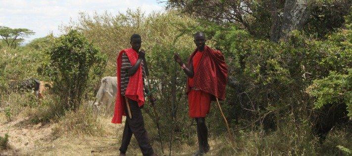 Africa Safari Kenya Maasai