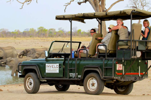 Safari game drive in Hwange National Park